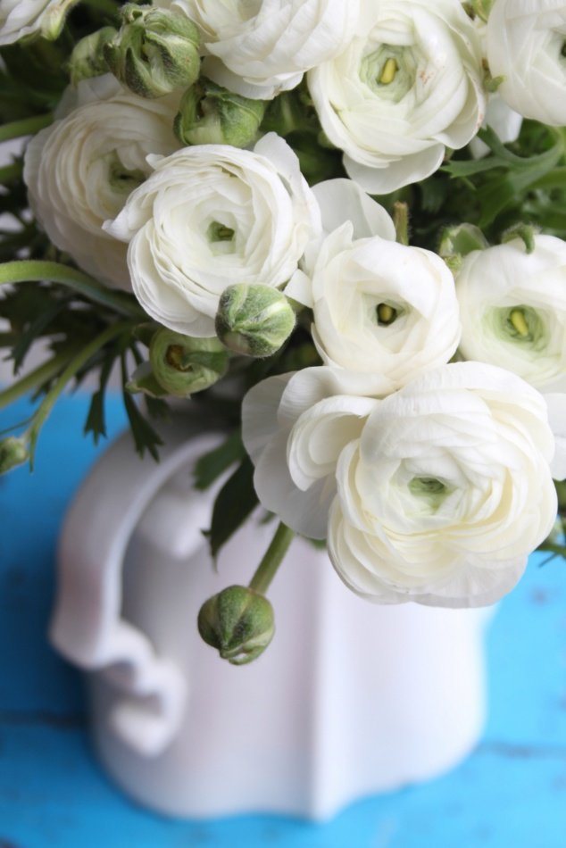 A burst of colour & fragrance with flowers - Top Tips For Viewings
